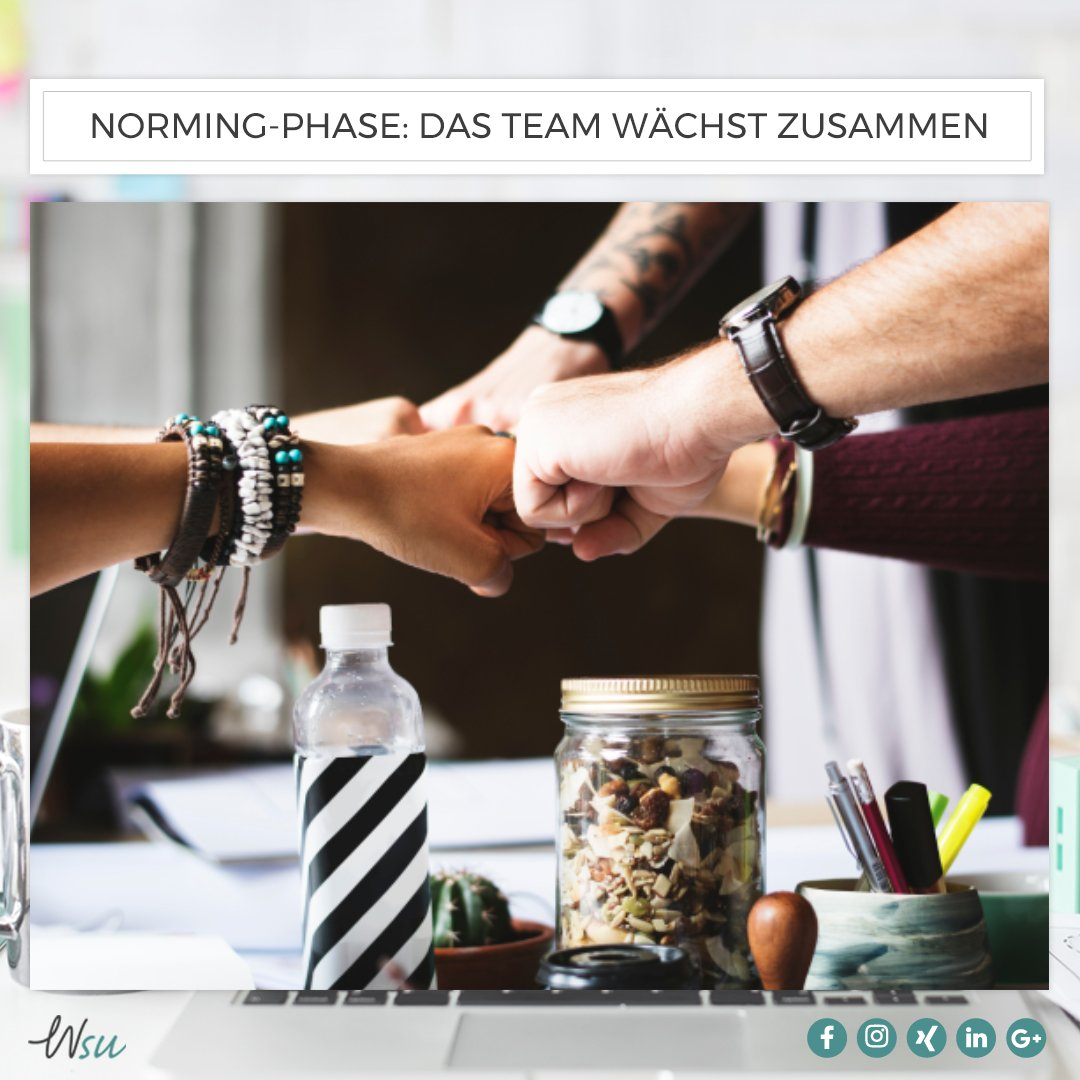 norming-phase-team-tuckman